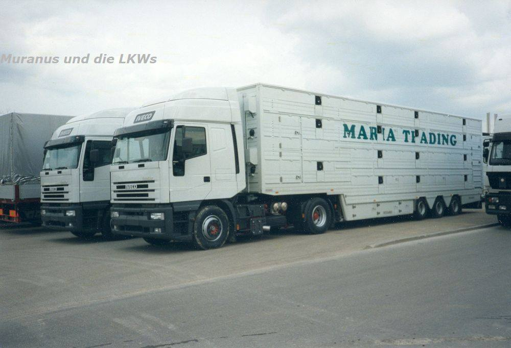 Iveco-Euro-Star-440-E-42-Vie-transport-Romenia