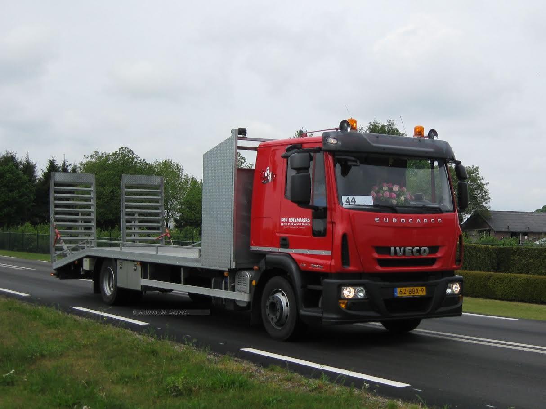 Horst--7