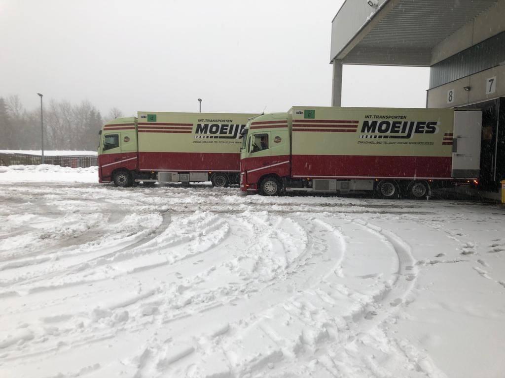 Verse-sneeuw-in-Thuringen-deze-week--13-3-2019--2
