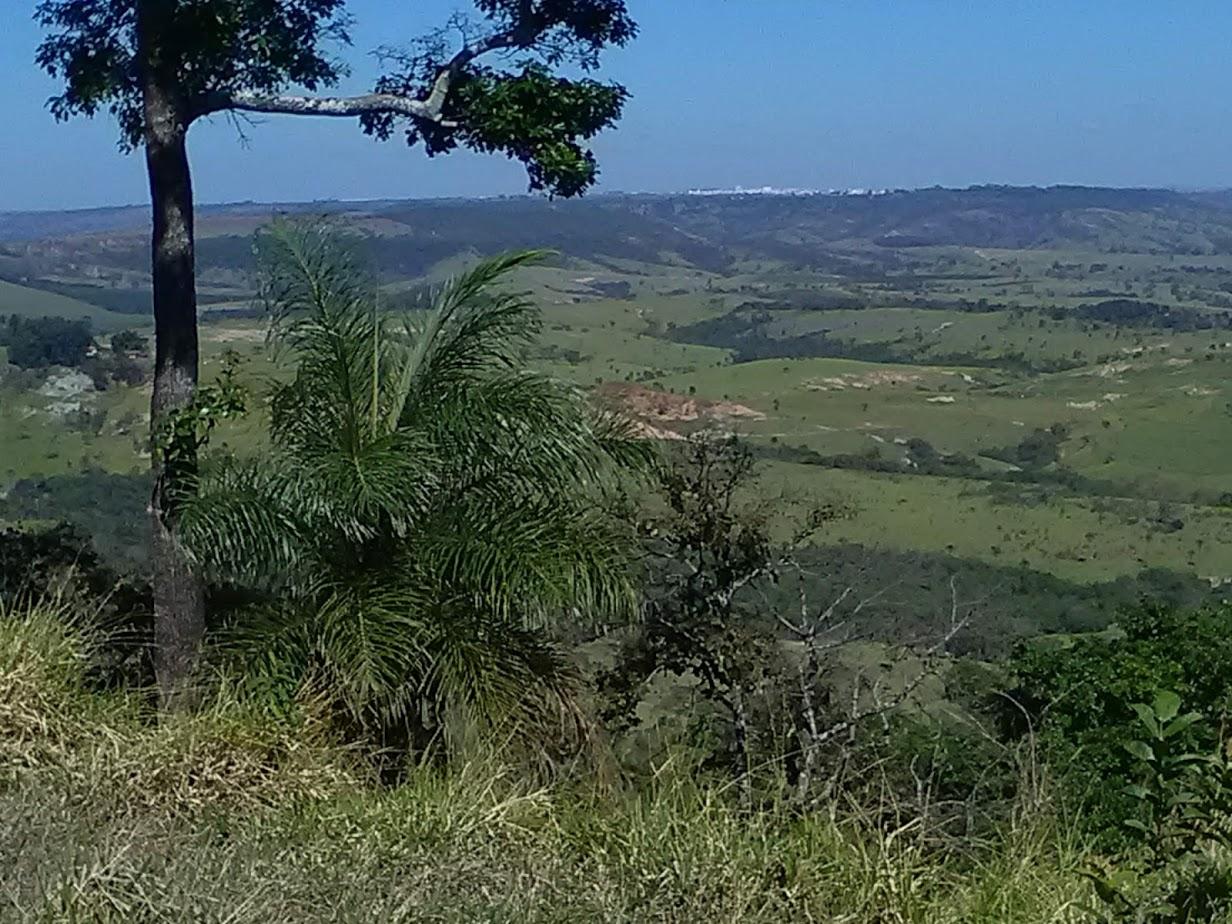 18-6-2019-Op-weg-naar-Sao-Paulo--langs-de-koffie-plantages-14