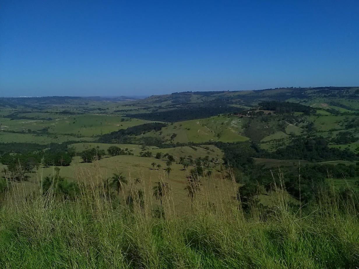 18-6-2019-Op-weg-naar-Sao-Paulo--langs-de-koffie-plantages-6