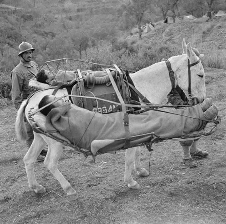 1915-Ambulance