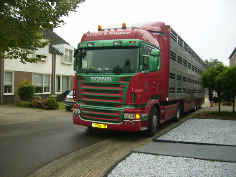 Scania--BS-NS-81-.jpg