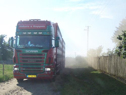 Scania--BT-DN-08