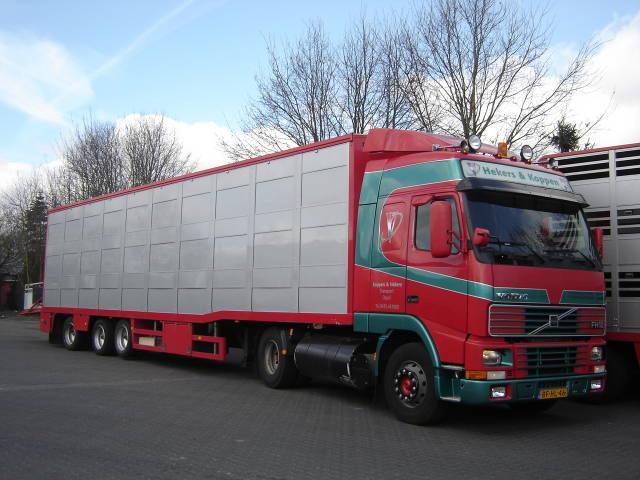 Volvo-BF-NL-46