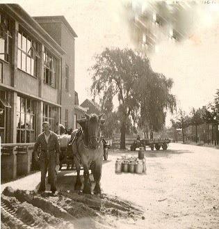 melkfabriek-aanleveren--Echt-Sibema