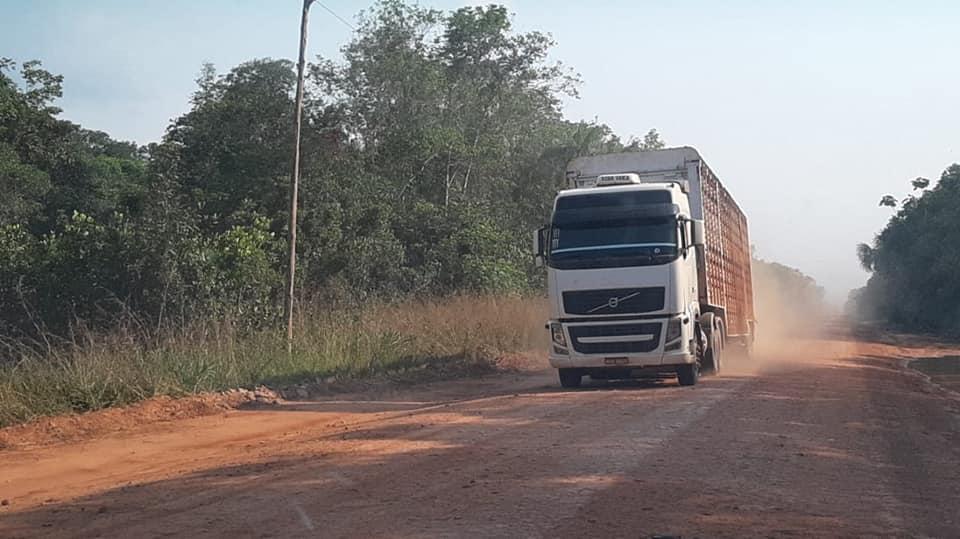 Manaus-Lacri-10