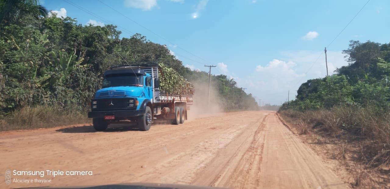 Manaus-Lacri-9