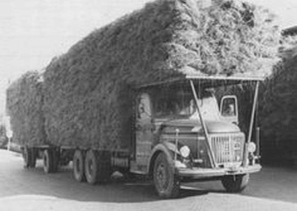 van-t--Kruis-Nieuwveen---vracht-vlas--Volvo-Viking