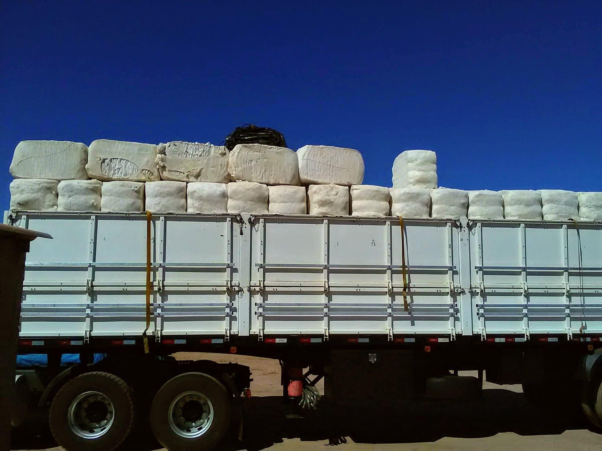 37-ton-katoenladen-voor-Santos-wagen-wordt-door-speciale-afdekkers--dicht-gemaakt-2