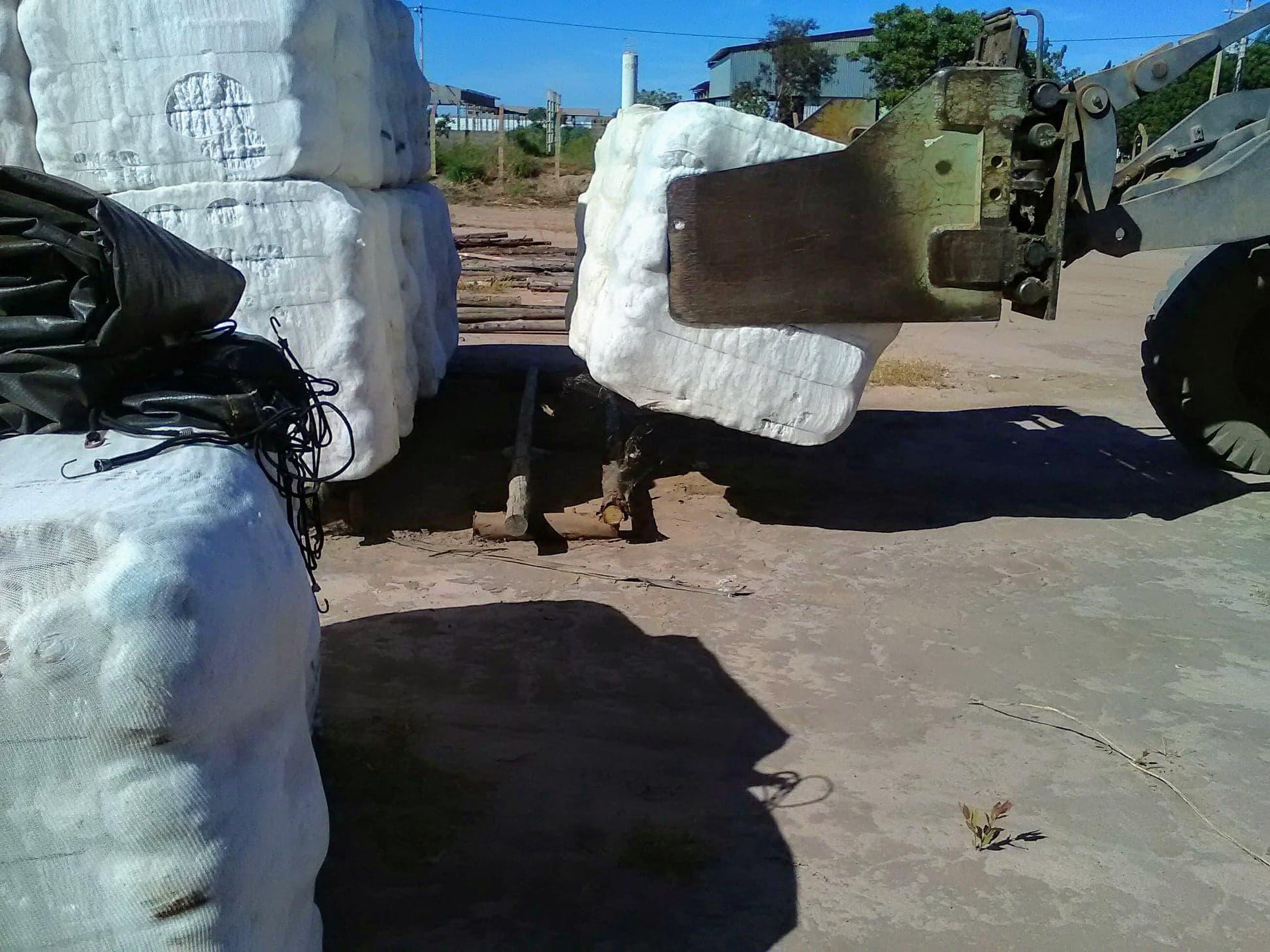 37-ton-katoenladen-voor-Santos-wagen-wordt-door-speciale-afdekkers--dicht-gemaakt-6