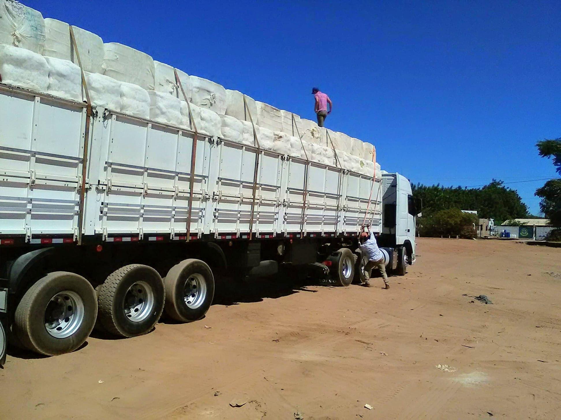 37-ton-katoenladen-voor-Santos-wagen-wordt-door-speciale-afdekkers--dicht-gemaakt-8