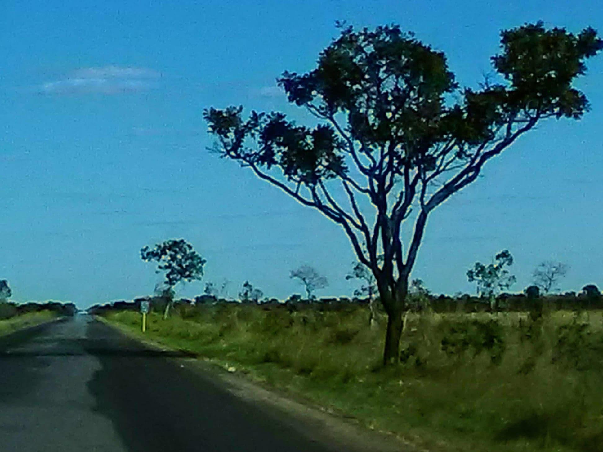 Y-de-weg-vanaf-het-park-naar-de-grote-weg-was-28-km-kaarst-rechtdoor.--4
