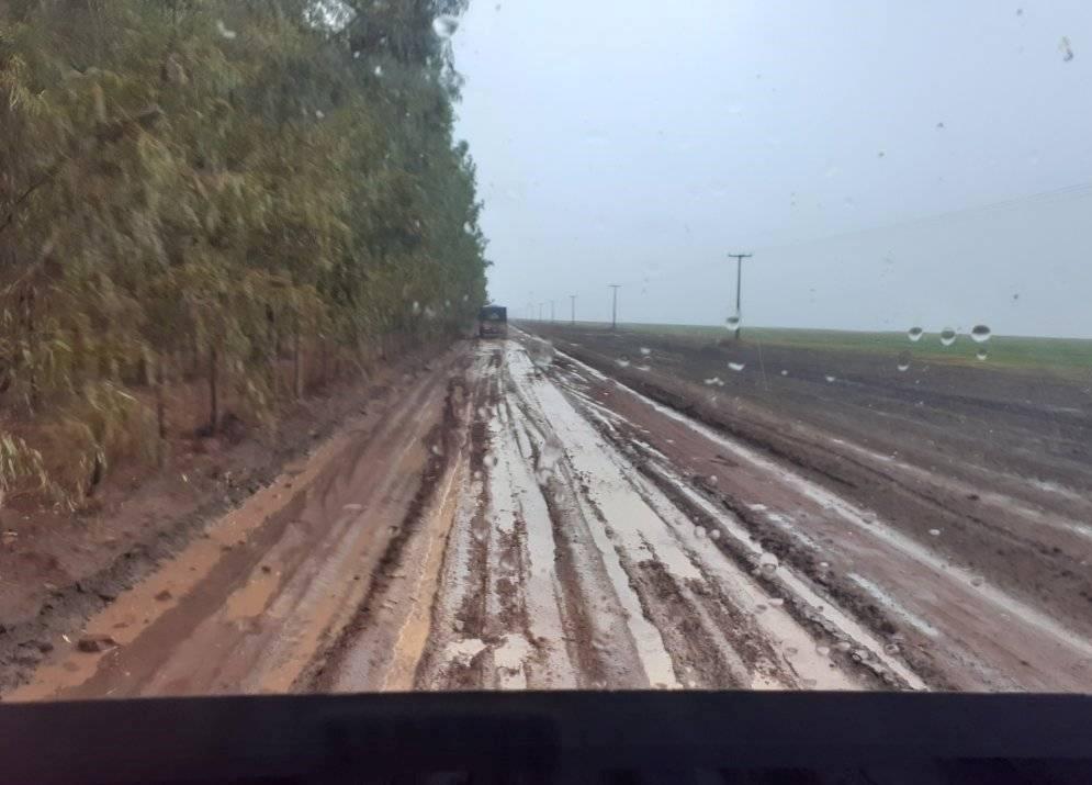 Regen-Chuva-2