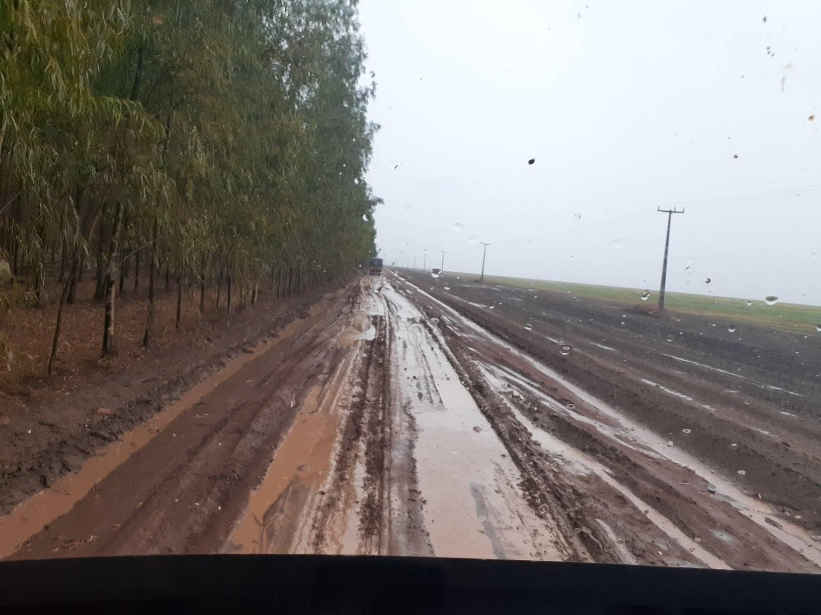 Regen-Chuva-4