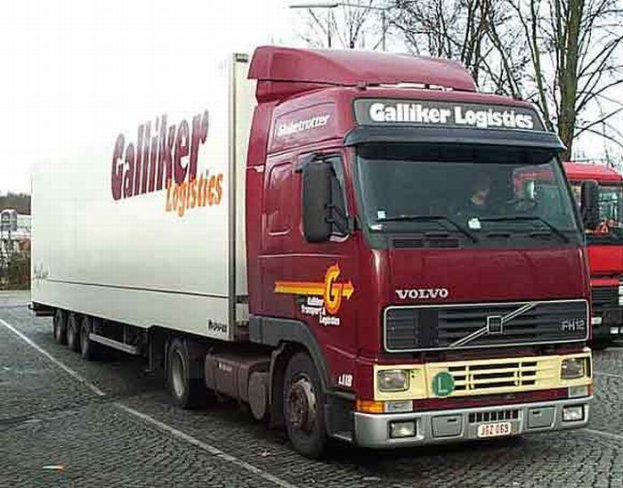 gallikerFoto001