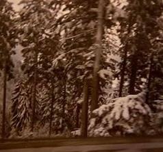 Winter-ritje-4