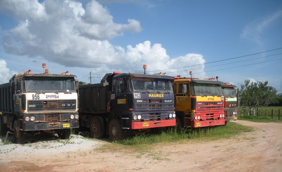 Suriname.1[1]