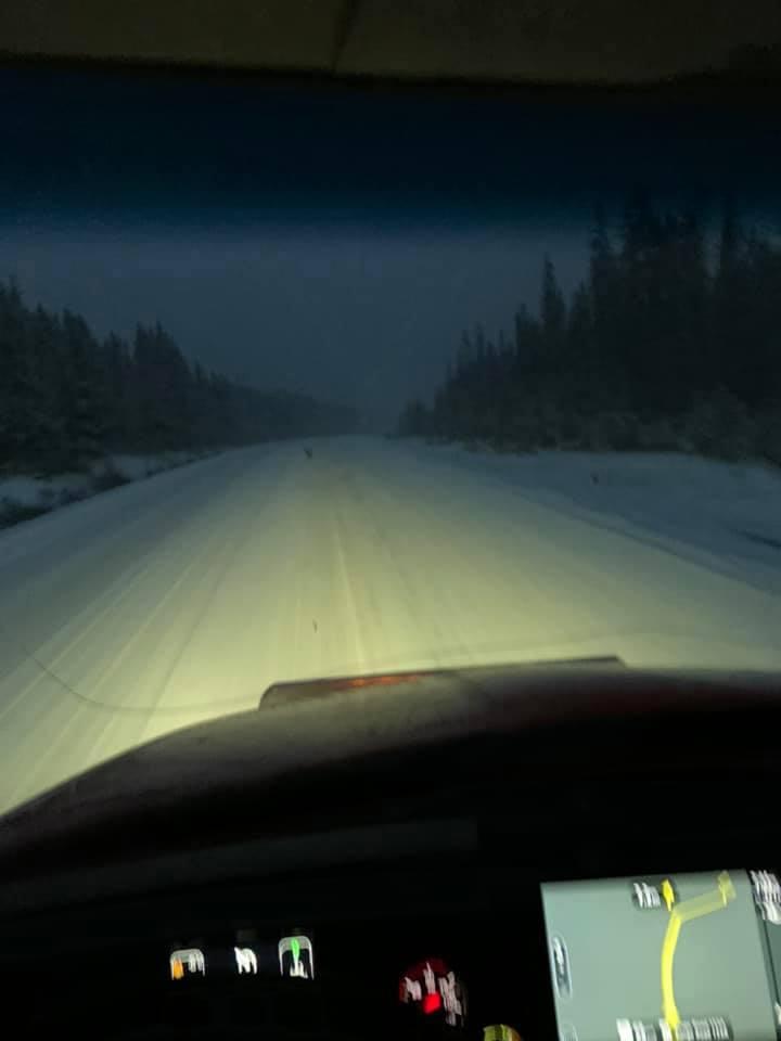 19-1-2020---wegenzout-van-Saskatchewan-naar-de-Rocky-mountains-in-British-Columbia-1