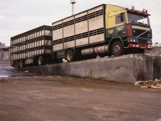 Volvo-schoonmaken-in-Gerona