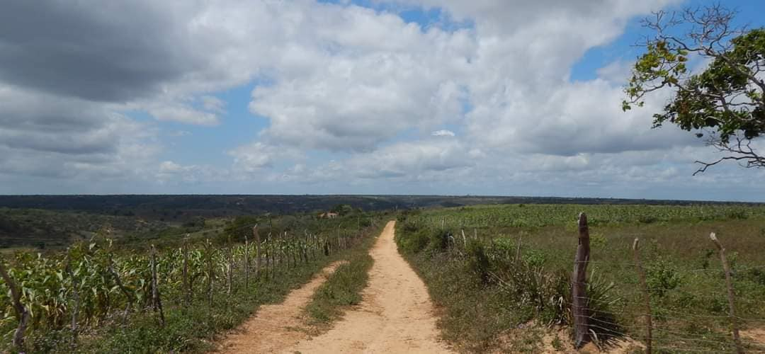 Zo-maar-fotos-van-onderweg-in-Bahia--18