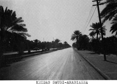 Finnish-drivers-driving-in-Saudi-Arabia-42