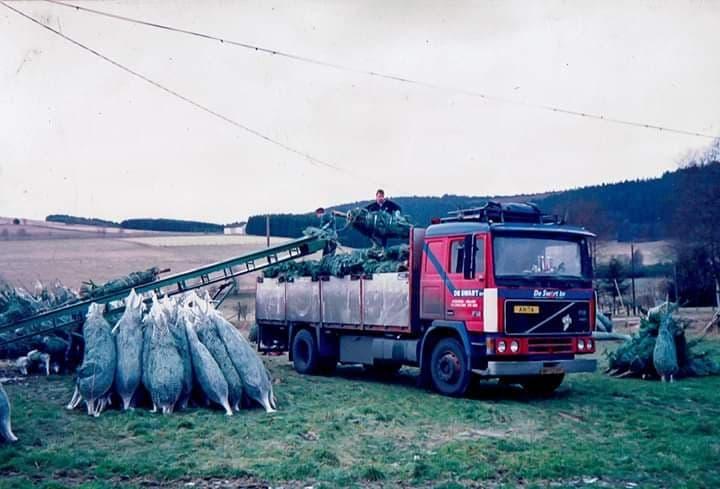 Volvo-Kerstbomen-laden
