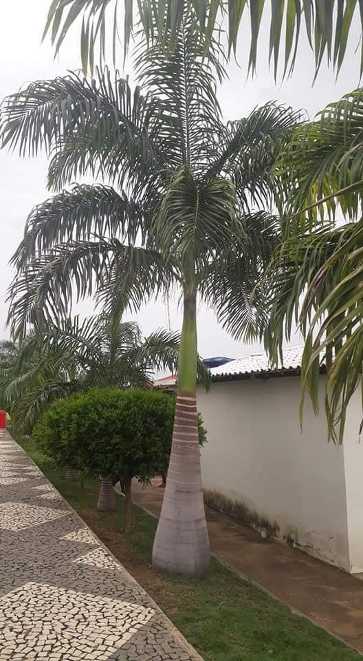 Foto-s-van-in-de-regio-Luis-Eduardo-en-Barrieres-15
