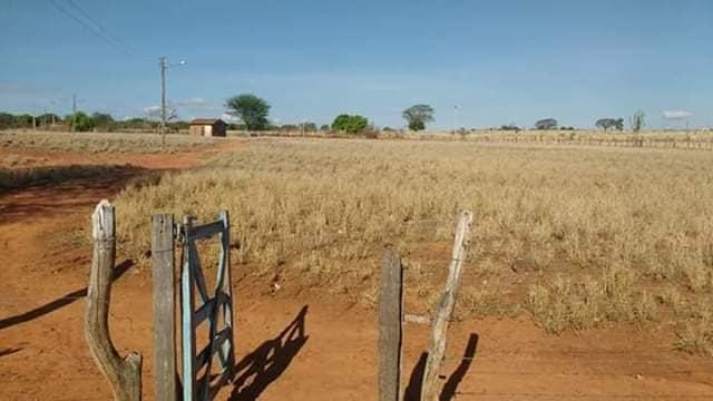 Foto-s-van-in-de-regio-Luis-Eduardo-en-Barrieres-17