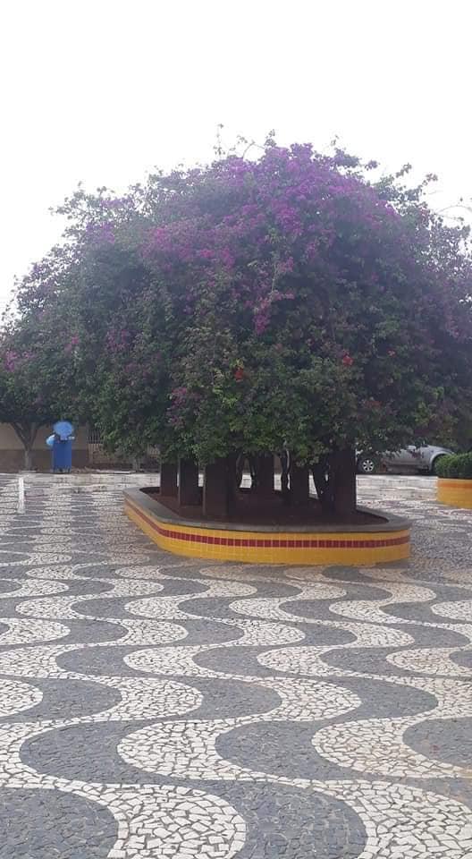 Foto-s-van-in-de-regio-Luis-Eduardo-en-Barrieres-35