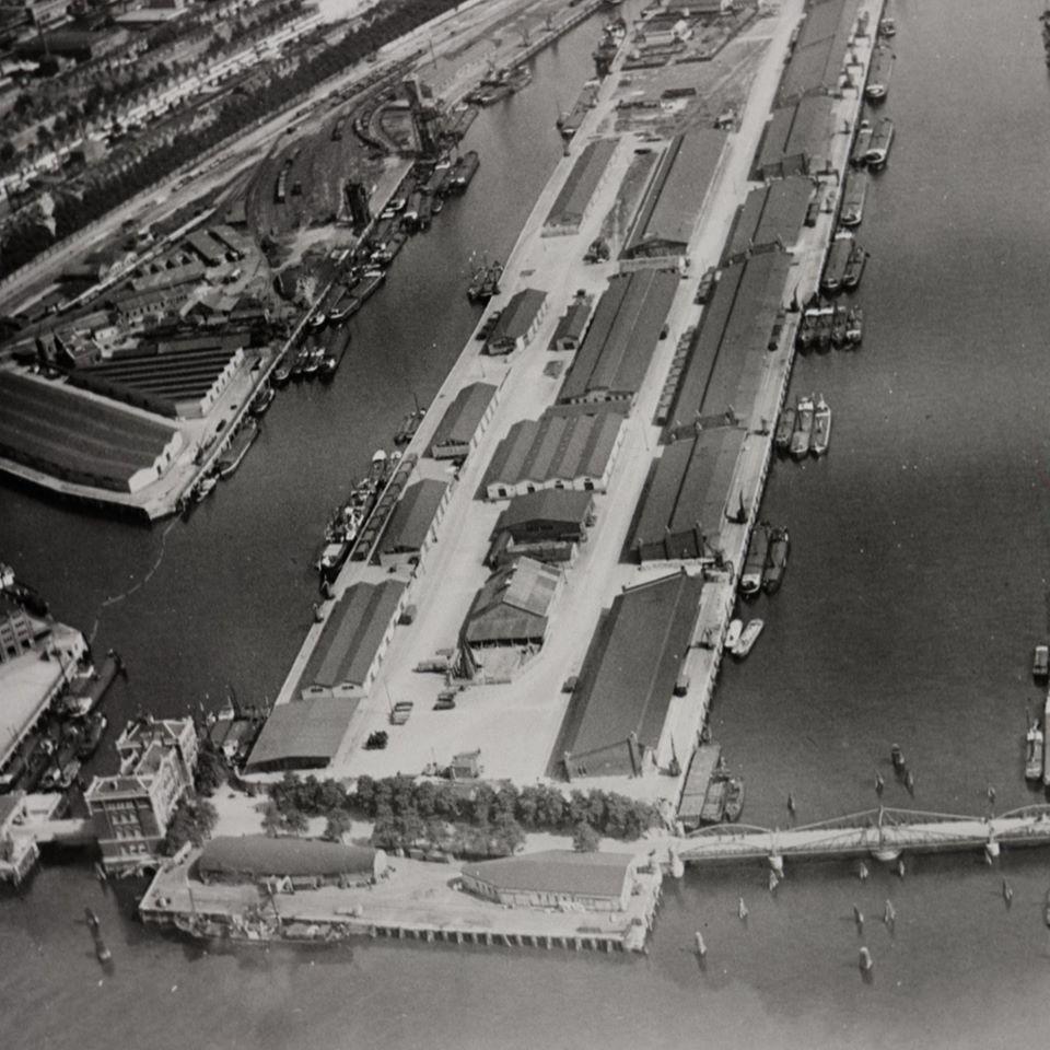 Binnen-haven-Rotterdam-5