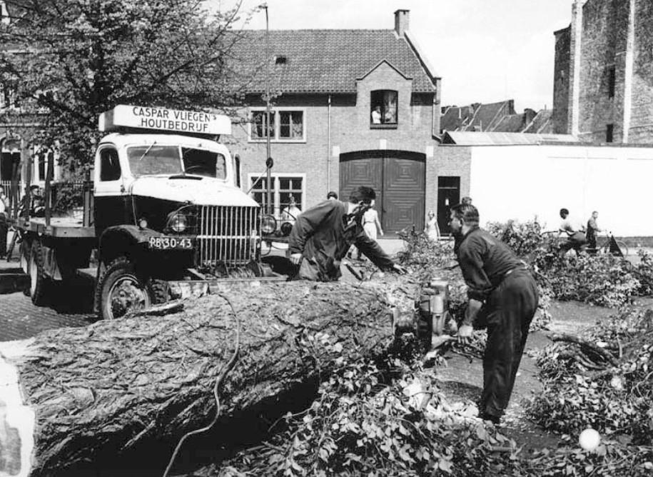 Bomen-rooien-bij-de-Pieterstraat-ca-1959