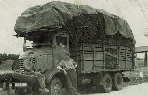 1950-op-de-weg-van-Putten-naar-Amersfoort-Vrachtwagen-geladen-met-eikenschors-voor-de-Oosteindse-looiers