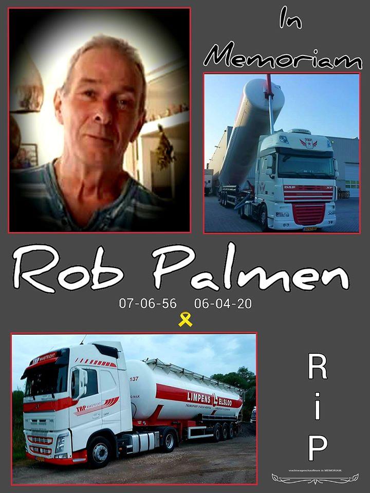 Rob-Palmen