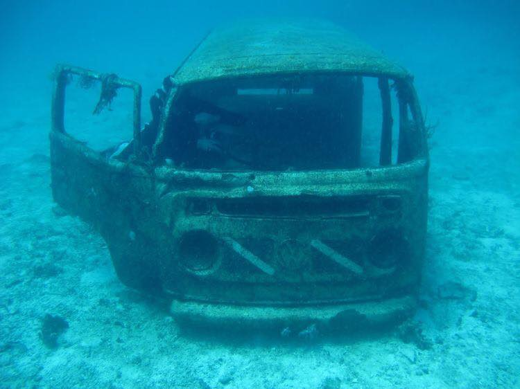 V-W-Bus