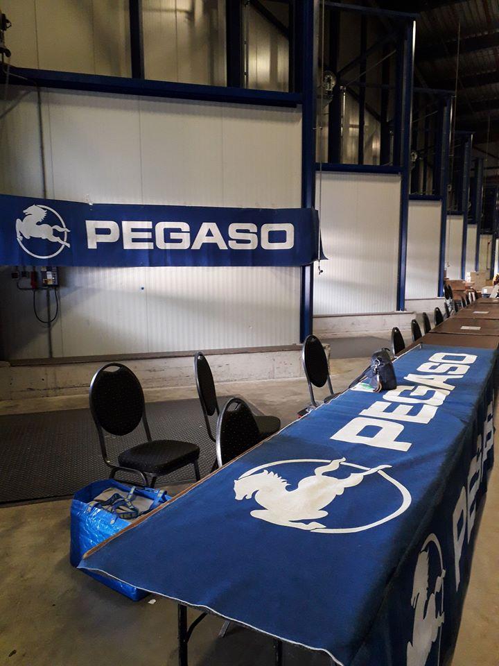21-4-2020-Beurs--Perry-Pegaso-foto-1