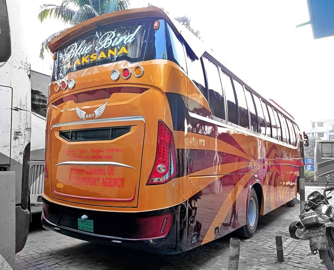 Bengali-Coach-(10)