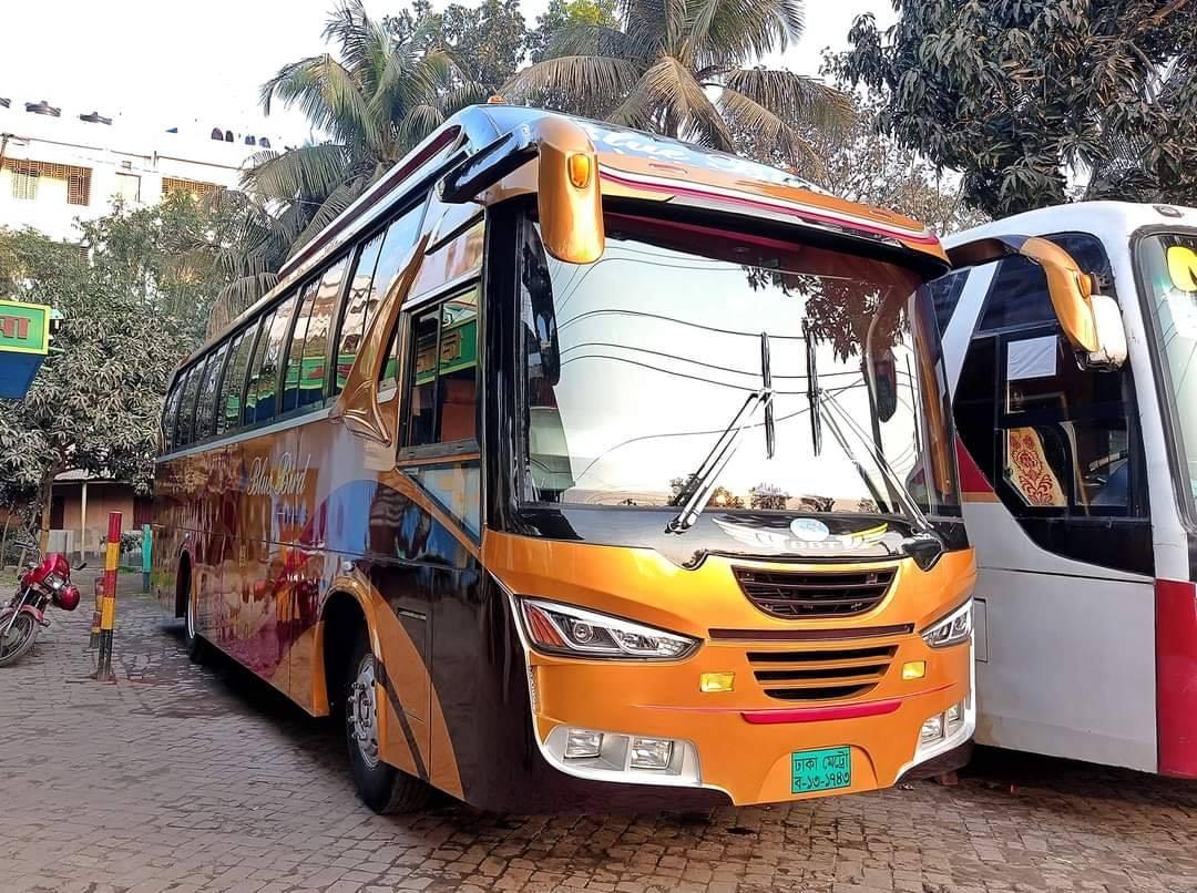 Bengali-Coach-(2)