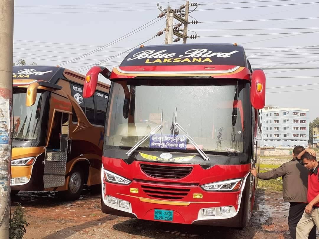 Bengali-Coach-(3)