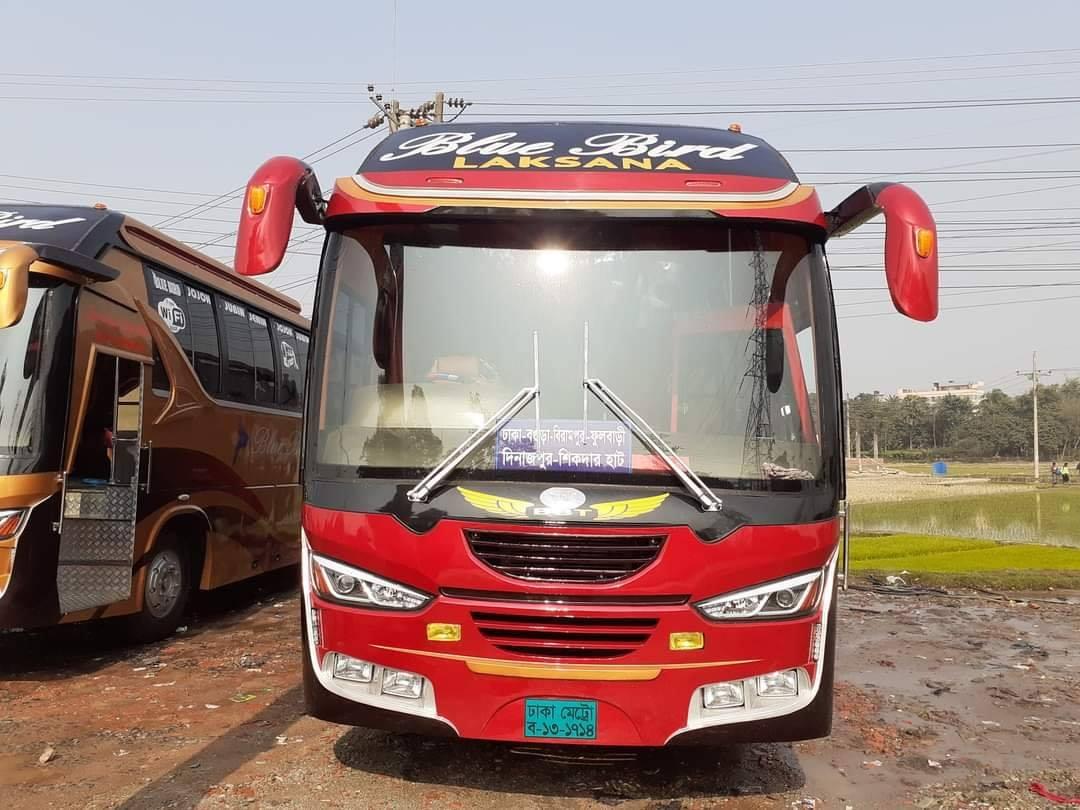 Bengali-Coach-(6)