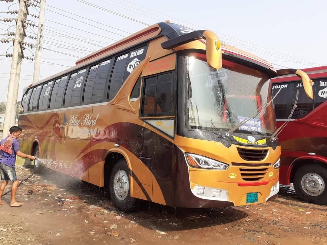 Bengali-Coach-(9)