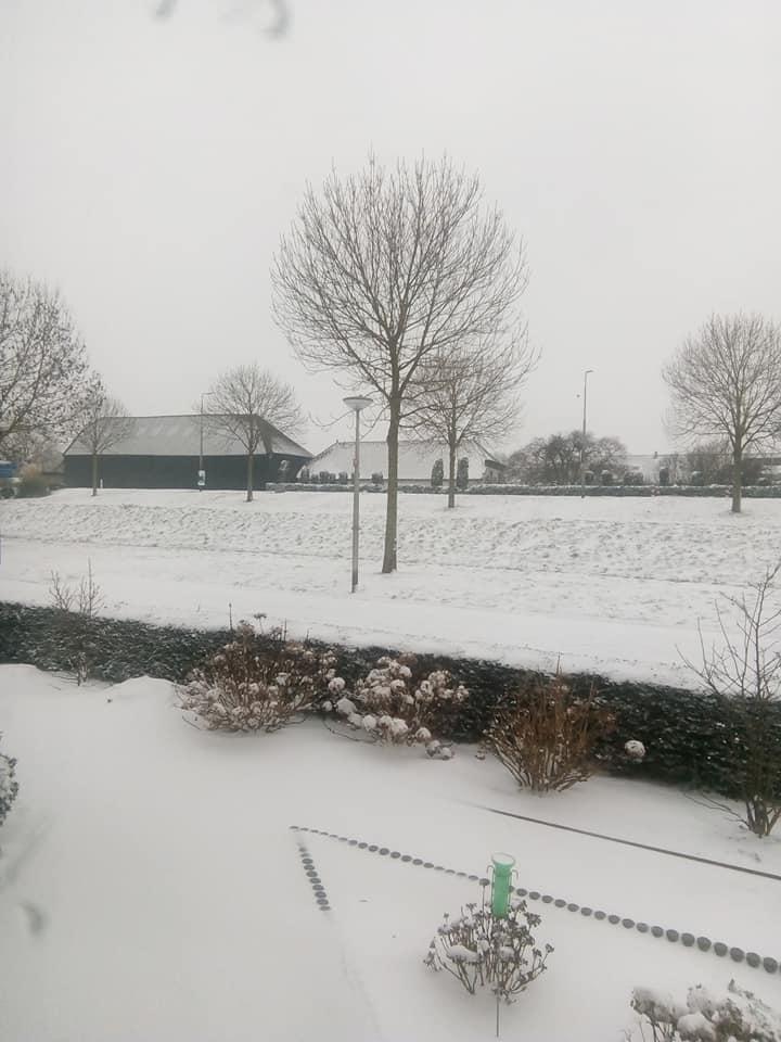 Cornelis-Kees-Dubbeldam-Morgenochtend-eerst-de-bak-schoon-vegen-,even-zoeken-waar-ik-8-jaar-geleden-de-bezem-neergezet-hebt-7-2-2021-(2)