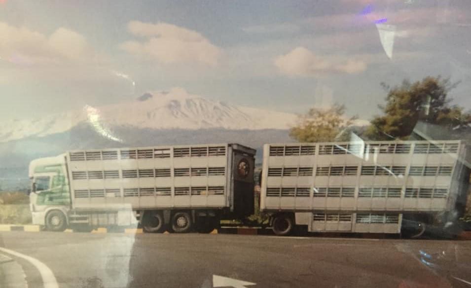 Peter-te-Keurs-op-weg-naar-Udine