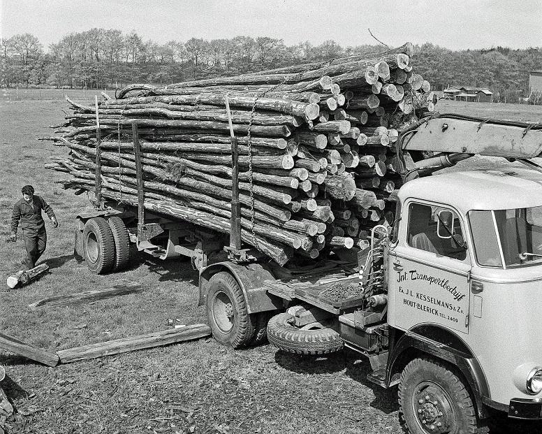 Daf-met-bomen