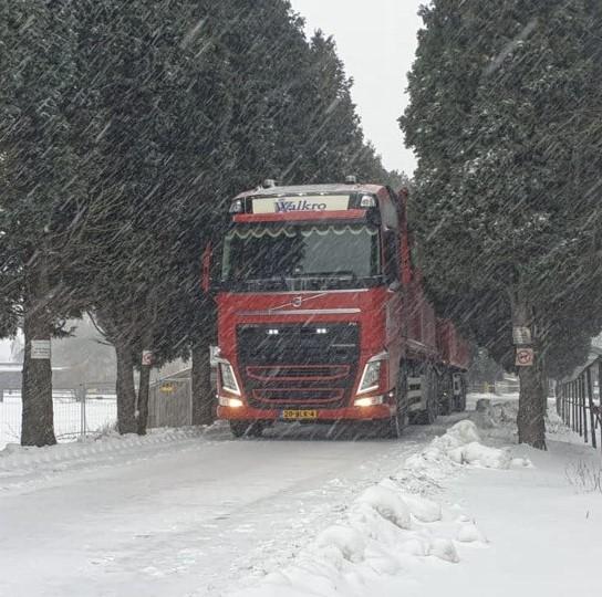 Winter-11-2-2021-(7)