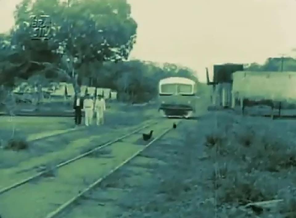 Madeira-Mamore-de-eerste-spoor-weg-1950---(13)