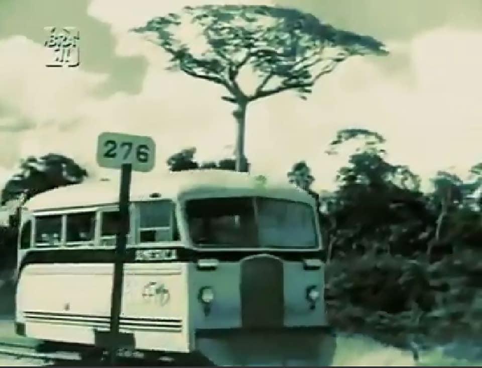 Madeira-Mamore-de-eerste-spoor-weg-1950---(7)