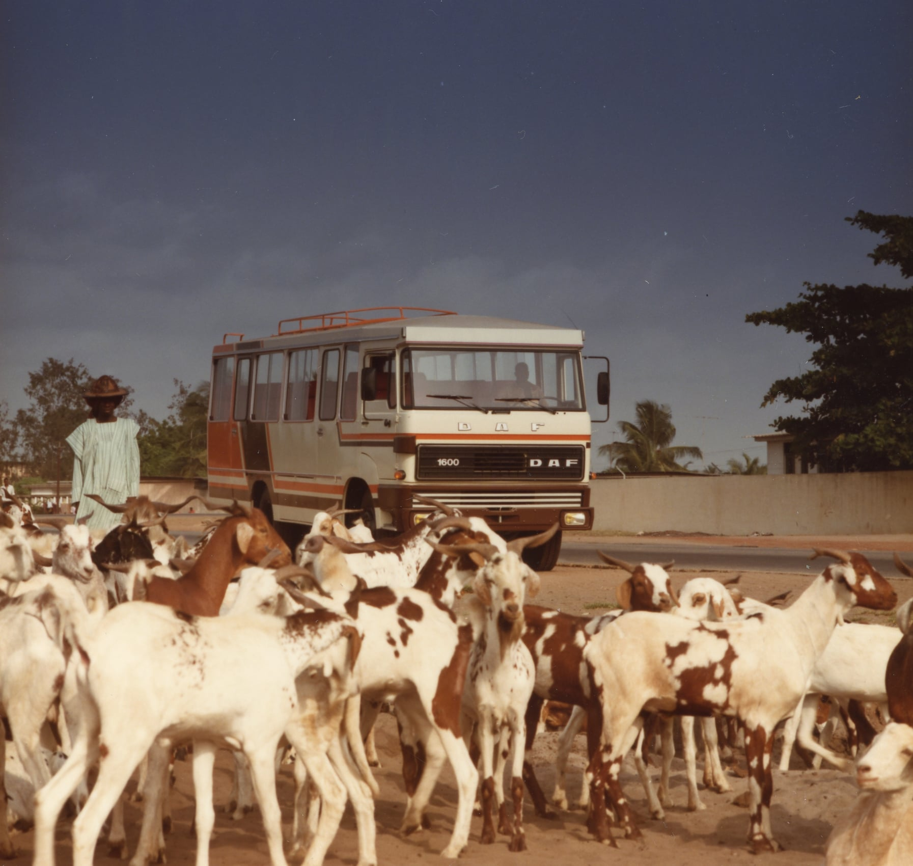 DAF-bus-in-Afrika