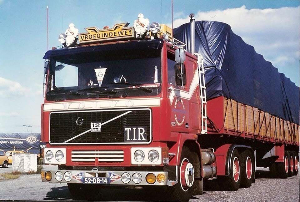 chauffeur-Alle-Schaap-metde-mooi-afgebonden--trailer--(2)