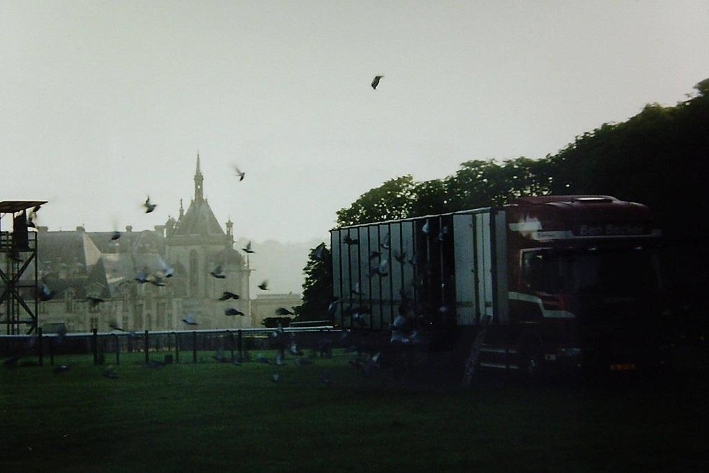 Met-mooi-weer-al-vroeg-de-duiven-eruit-in-Pont-Sainte-Maxence-net-boven-Parijs--Ron-van-Nieuwenhuizen